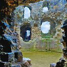 Denbigh Castle by Cathy Jones