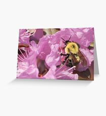 Bumble Bee Wings Greeting Card