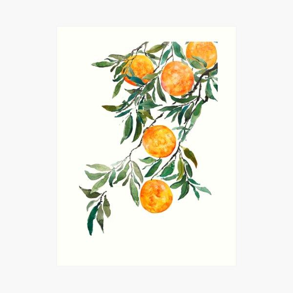 Orange Cove Mulholland Drive Mandarin Orange Citrus Fruit Crate Label Art Print
