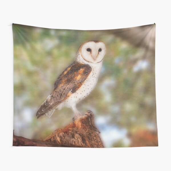 Chips the Barn Owl, Native Animal Rescue Tapestry