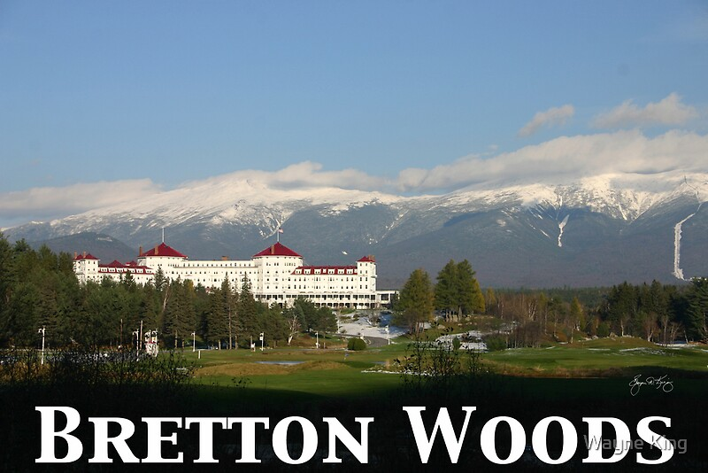hindu single men in bretton woods 9 the collapse of the bretton woods fixed exchange rate system peter m garber the collapse of the bretton woods system of fixed exchange rates was one of the most accurately and generally predicted of major economic events.