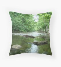Invitation To Wade Accepted Throw Pillow