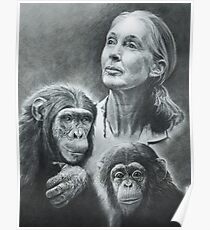 WE ARE FAMILY  JANE GOODALL Poster