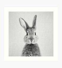Kaninchen - Schwarz & Weiß Kunstdruck