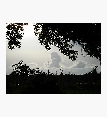 Sunset in Monochrome Photographic Print