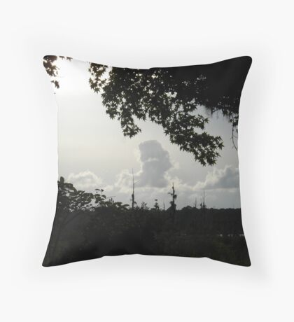 Sunset in Monochrome Throw Pillow