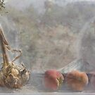 ON the Window Sill by Linda Lees
