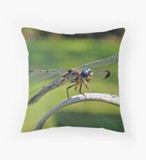 Curious Dragonfly Throw Pillow