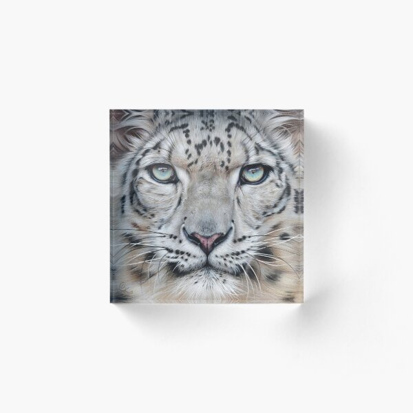 Faces of the wild - Snow Leopard Acrylic Block