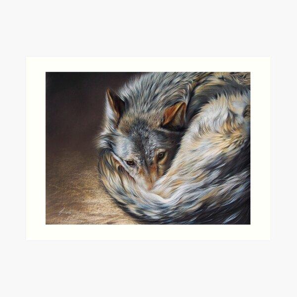 Watchful rest (Grey Wolf) Art Print