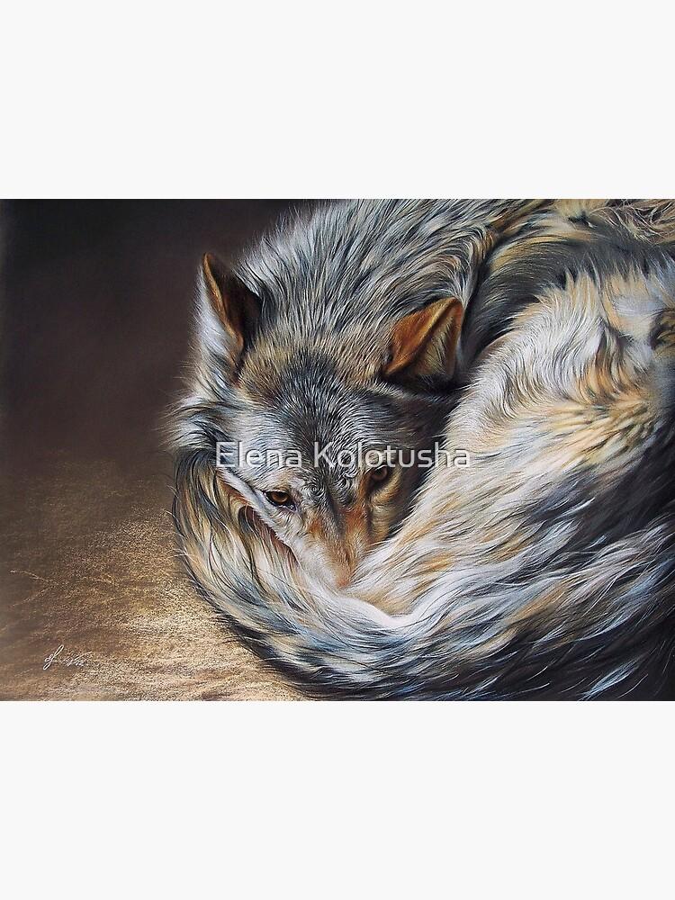 Watchful rest (Grey Wolf) by yelenabella
