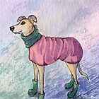Greyhound dog in winter outfit and wellies by SusanAlisonArt