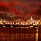 Charles River Bridges . by LudaNayvelt