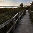 Boardwalk to the barrels by MagnusAgren