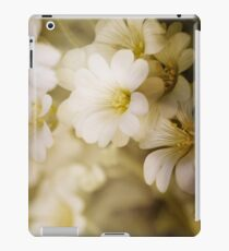 Soft touch  iPad Case/Skin