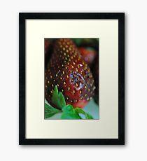 Strawberry Close Up Framed Print