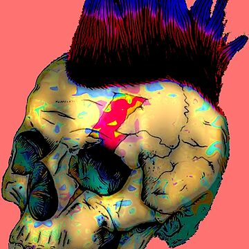 Punk Skull by painterfrank