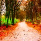 Tiergarten Path by Jason Bran-Cinaed