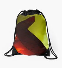 Alexunderprats Drawstring Bag