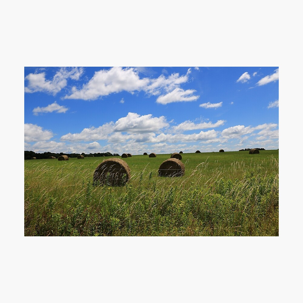 The Bales of Summer Photographic Print