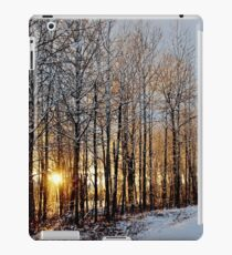 Shimmering Icy Sunset iPad Case/Skin