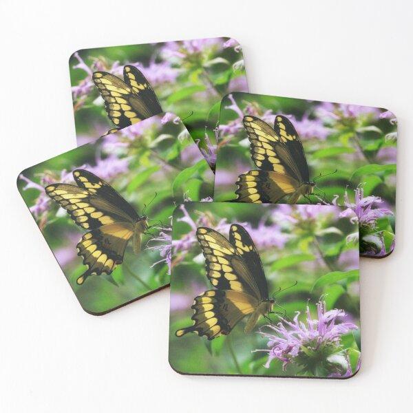 Tiger Swallowtail & Bee balm Coasters (Set of 4)