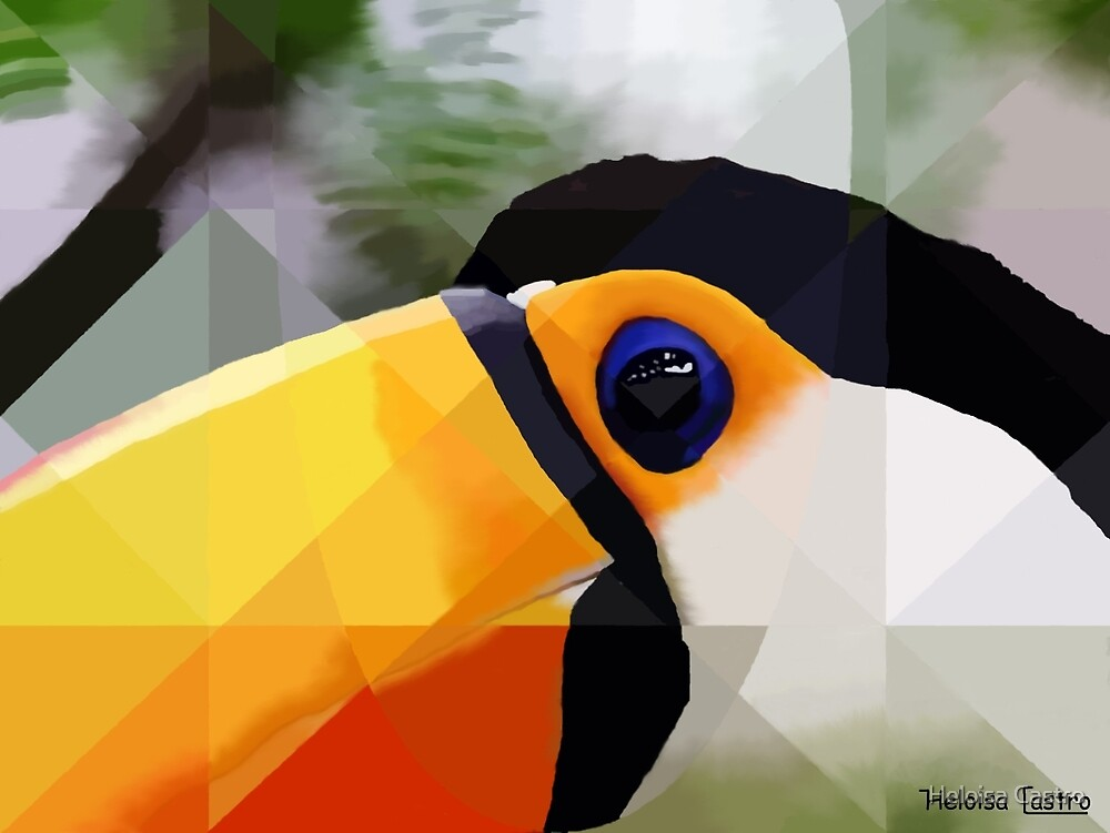 HC 002 Toucan by Heloisa Castro