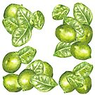 Watercolor Limes and Leaves  by Erika Lancaster