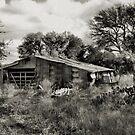 On The Farm  2     ( BoneYard Series ) by Carla Jensen