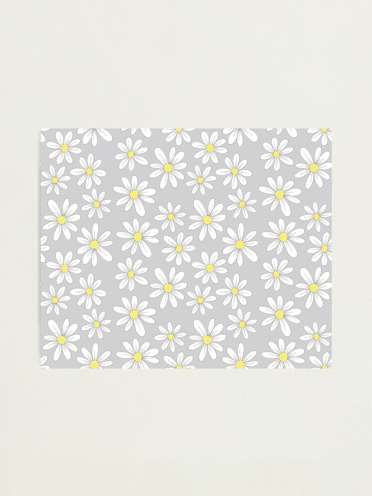 Alternate view of simple daisies on gray Photographic Print