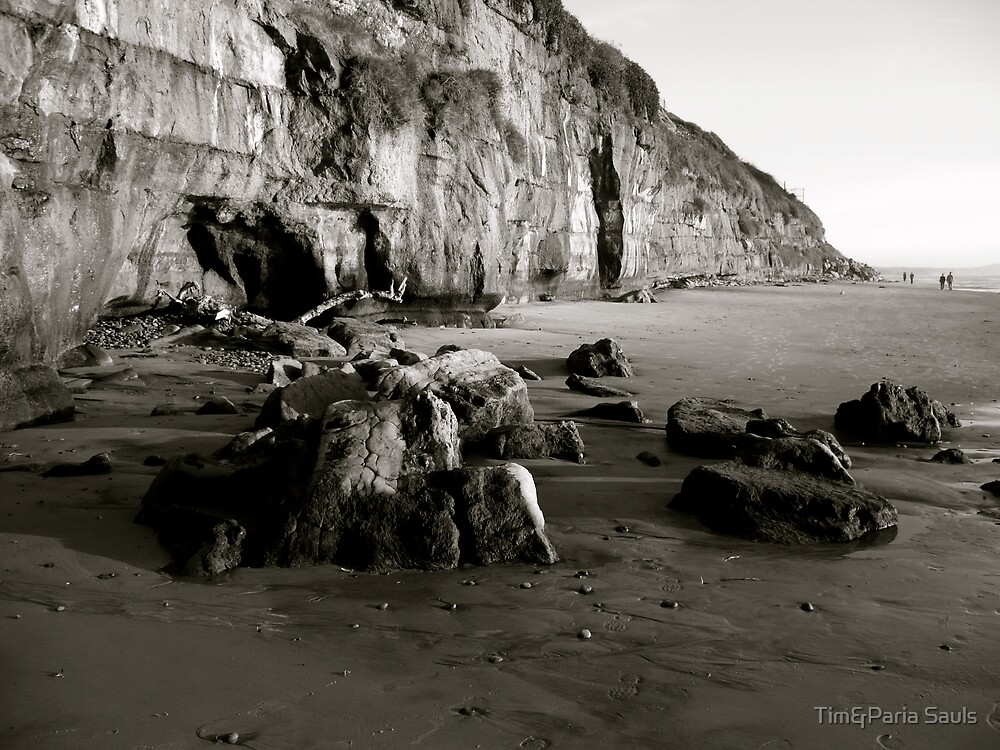"""Encinitas Beach, Looking South B & W"" by Tim&Paria Sauls"