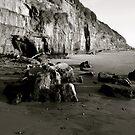 """Encinitas Beach, Looking South B & W"" by Tim&Paria Sauls"