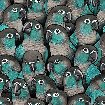 Turquoise Green-Cheeked Conures by MaratusFunk