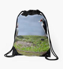 Puffins Drawstring Bag