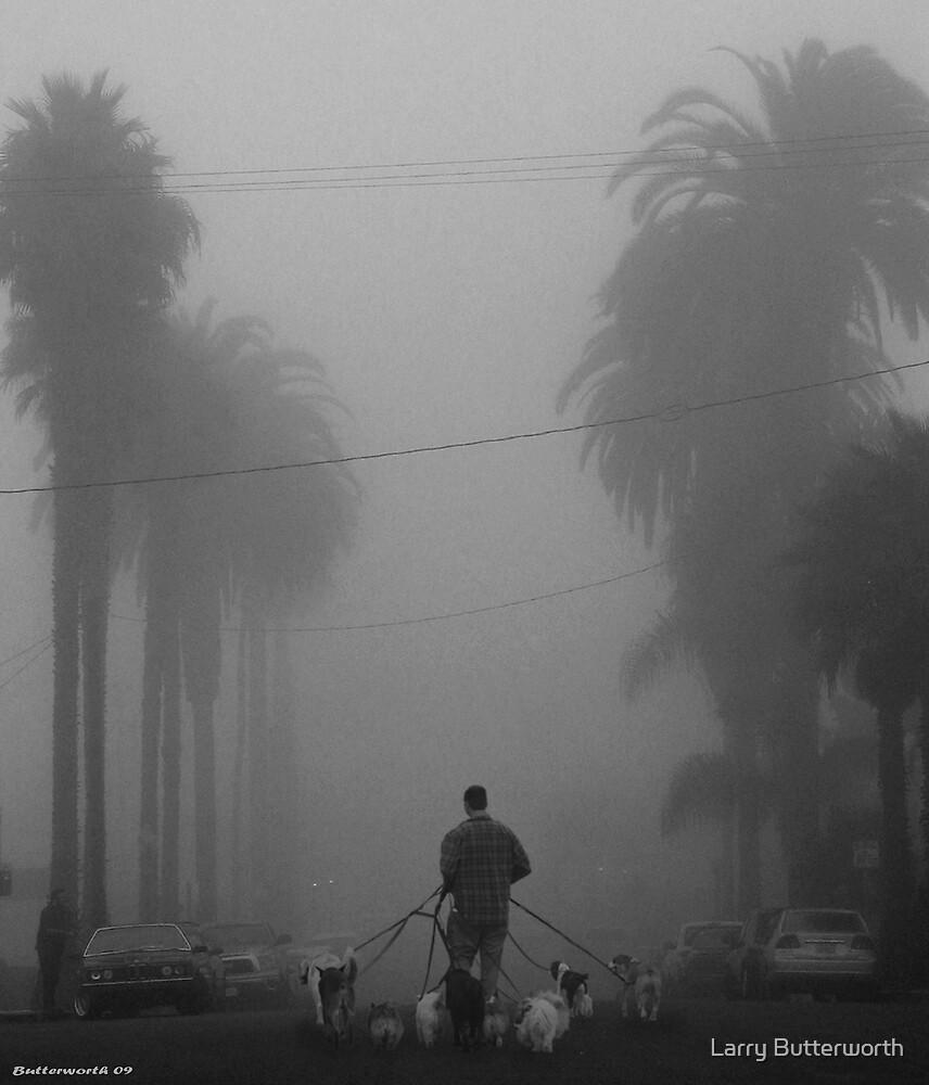 WALKING THE DOGS by Larry Butterworth