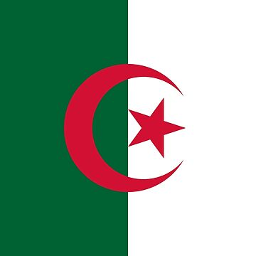 Flag of Algeria by richdelux