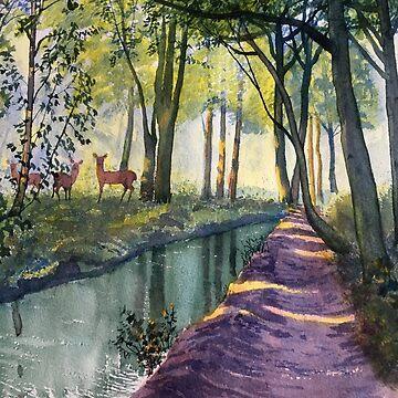Summer Shade in Lowthorpe Wood by treeman
