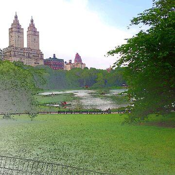 Central Park New York City by Almdrs