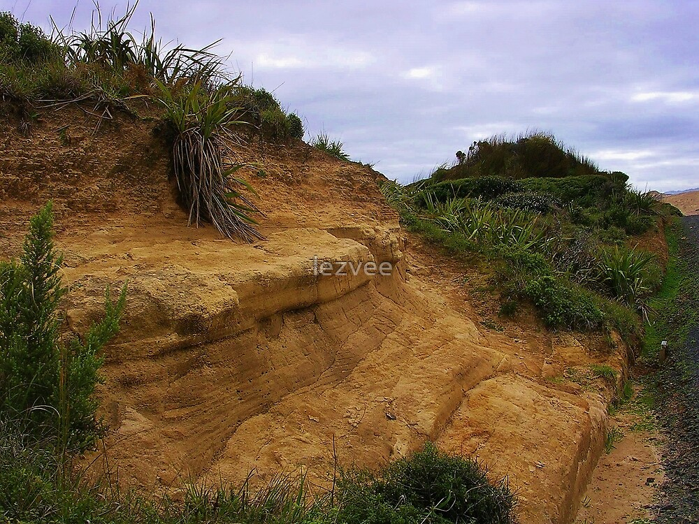 Rocks At Martins Bay by lezvee
