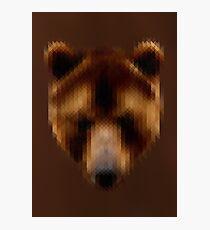 Pixel Brown Bear Photographic Print