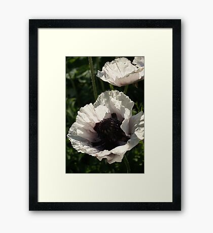 Summer Perfection Framed Print