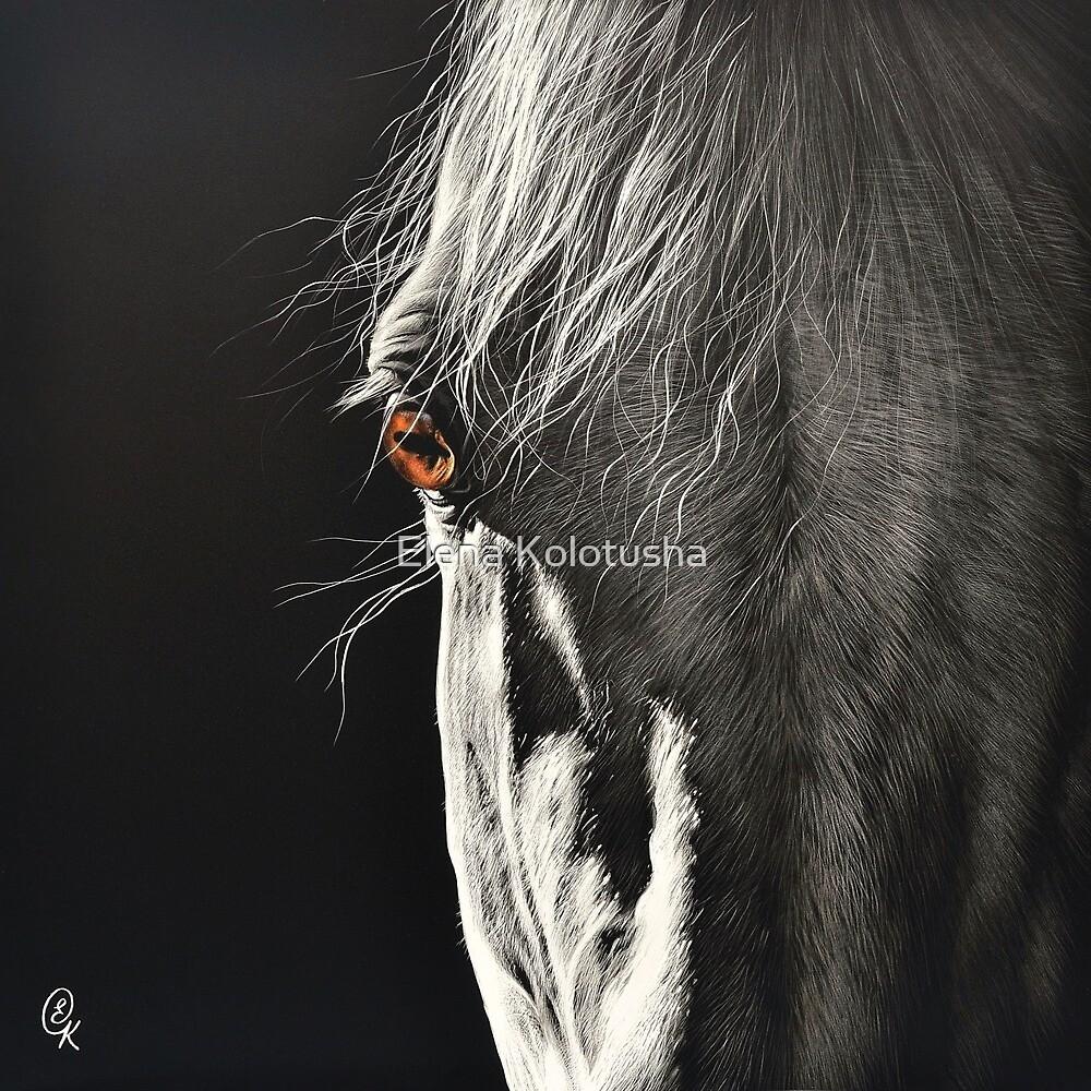 Glance by Elena Kolotusha