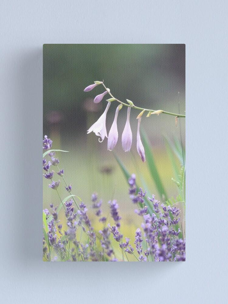 Alternate view of Pretty in lavender Canvas Print