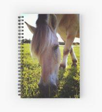 Fjord Horse Grazing Spiral Notebook