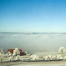 Winter landscape, Palezieux, Switzerland by Mark Howells-Mead