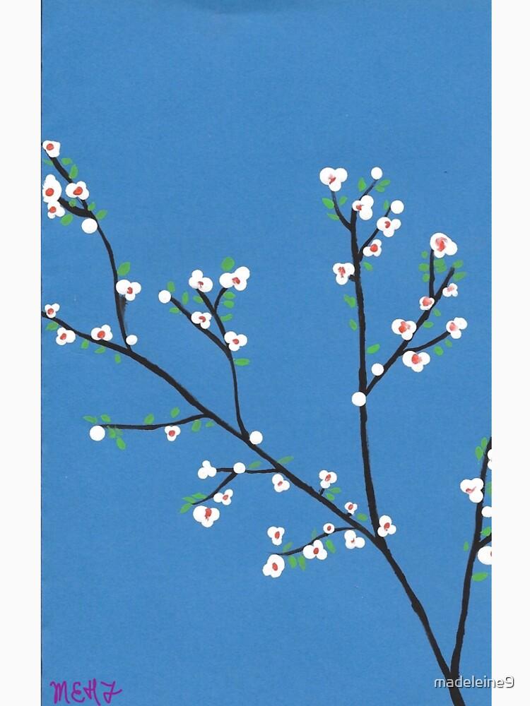 Blüten von madeleine9