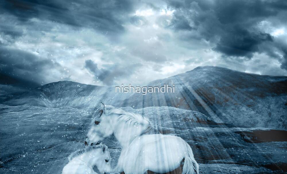 Horses.. by nishagandhi