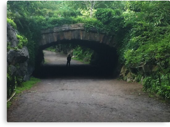Tunnel of Love - Central Park West by csegalas