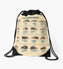 Hedgehogs of the World Drawstring Bag