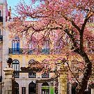 Spring in Lisbon by 7horses